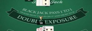 Double Exposure Blackjack